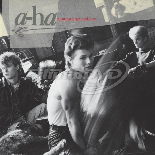 A-ha: Hunting High And Low (Reedice 2018) LP