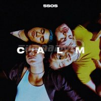 5 Seconds Of Summer: Calm (LP)