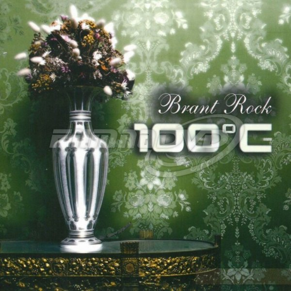 100°C: Brant Rock (Limited Edition + Remixed)