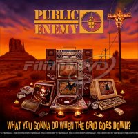 Public Enemy: What You Gonna Do When The Grid Goes Down