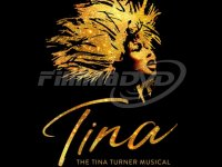 Various: Tina: The Tina Turner Musical