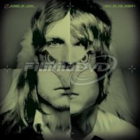 Kings of Leon: Only By the Night (2LP)