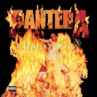 Pantera: Reinventing The Steel (LP)